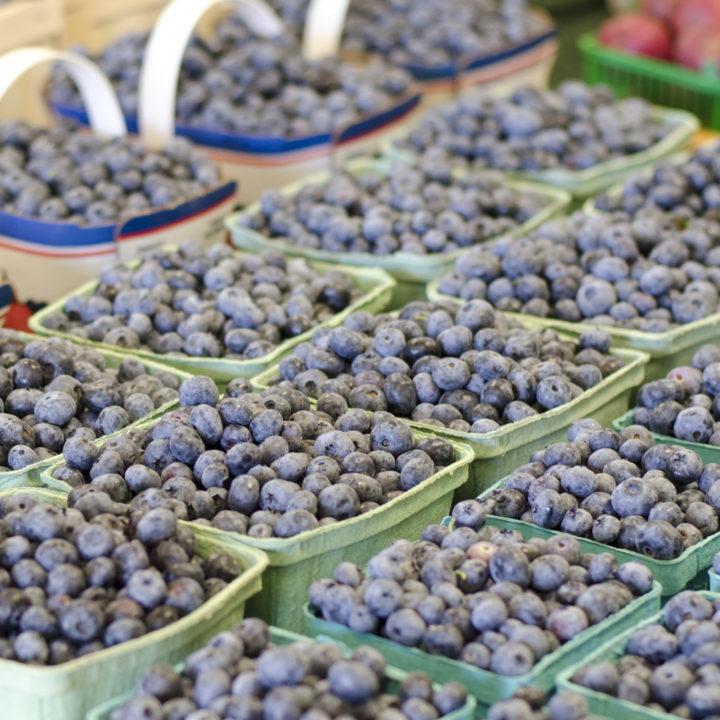 It's Ontario Blueberry Season