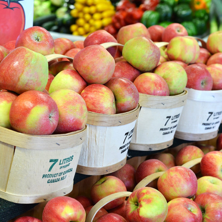 How to best store your apples
