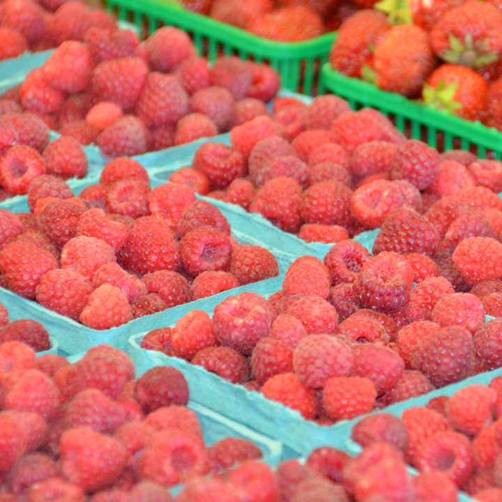 Now in season: Fresh Ontario Raspberries!!